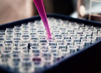 Badanie genetyczne po poronieniach